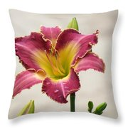 Daylily Delight Throw Pillow
