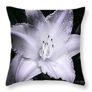 Daylily Flower With A Tint Of Purple Throw Pillow