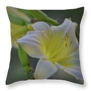 Daylily In Yard Throw Pillow