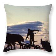 Day's End Amish Farmer Barnhill Throw Pillow