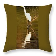 Days End With One Egret Throw Pillow