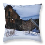 Days Gone By 4 Throw Pillow