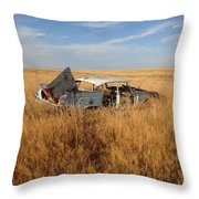 Day's Gone By  Throw Pillow