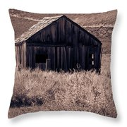 Days Long Gone Throw Pillow