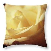 Days Of Creamy Rose Throw Pillow