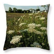 Days Of Queen Annes Lace Throw Pillow