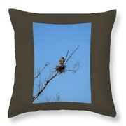 Days Work Well Done Throw Pillow