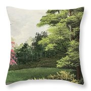 Daytime Color Throw Pillow