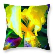 Dazzle In The Garden Sun Throw Pillow