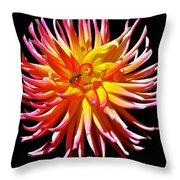 Dazzling Dahliia Throw Pillow