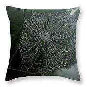 Db6325-dc Spiderweb On Sonoma Mountain Throw Pillow