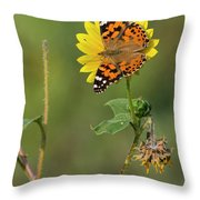 Ddp Djd Painted Lady On Sunflower 2690 Throw Pillow