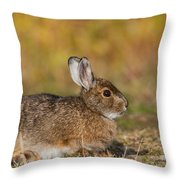 Ddp Djd Snowshoe Hare 98 Throw Pillow