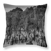 Dead Lakes Cypress Stumps Bw  Throw Pillow