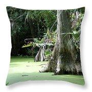 Wild Florida Dead Mans River Throw Pillow