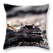 Dead Marine Iguana Throw Pillow