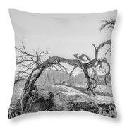 Dead Old Tree Near Monument Valley Arizona Throw Pillow