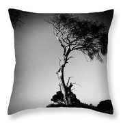 Dead Tree Bw Throw Pillow