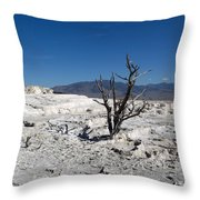 Dead Tree In Yellowstone Park Hot Springs  Throw Pillow