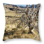 Dead Tree Panorama Throw Pillow