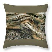 Dead Tree Textures Throw Pillow