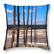Dead Trees Standing In Hot Springs Within Yellowstone National P Throw Pillow