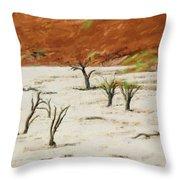 Dead Vlei Namibia Throw Pillow