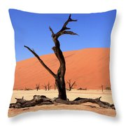 Dead Vlei Tree  Throw Pillow by Aidan Moran