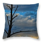 Dead With Color Throw Pillow