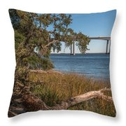 Dead Wood Along Jogging Path Throw Pillow