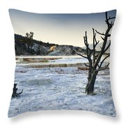 Dead Wood Springs Throw Pillow