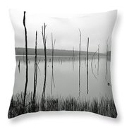 Deadman's Cove 1 Throw Pillow