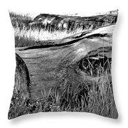 Deadwood On Cherry Creek Trail 2 Throw Pillow