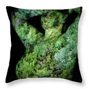 Deanna Throw Pillow