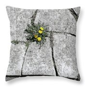 Death Begets Life Throw Pillow