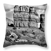 Death On Notom-bullfrog Road - Capitol Reef - Bw Throw Pillow