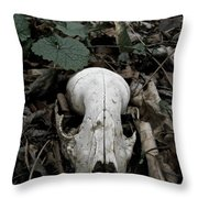 Death Over The Winter Throw Pillow