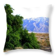 Death Valley 2 Throw Pillow