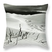 Death Valley Brush Throw Pillow