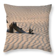 Death Valley Morning Throw Pillow by Sandra Bronstein