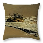 Death Valley Salt Throw Pillow