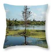 Death Within Throw Pillow