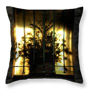 Death's Nursery  Throw Pillow