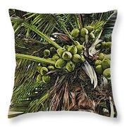 Debbie's Coconuts Throw Pillow