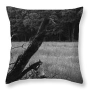 Debris Black And White Throw Pillow