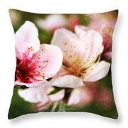 Decadent Spring Delight Throw Pillow