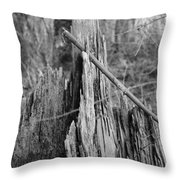 Decayed Stump Throw Pillow