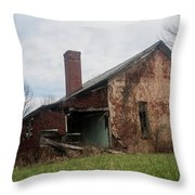 Decaying Knowledge Throw Pillow