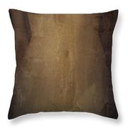 Decaying Memory Throw Pillow