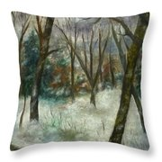 December On Cooper Hill Throw Pillow